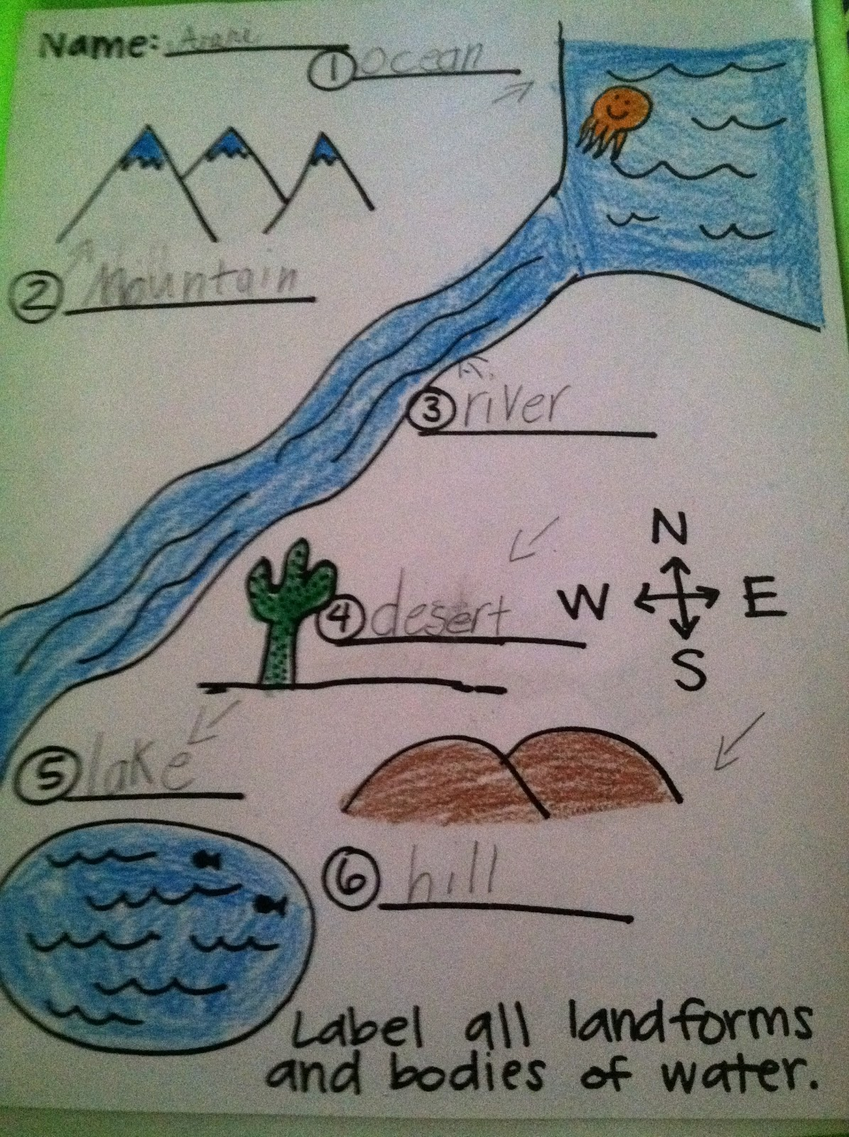 Adventures Of First Grade More Kevin Henkes And Landforms