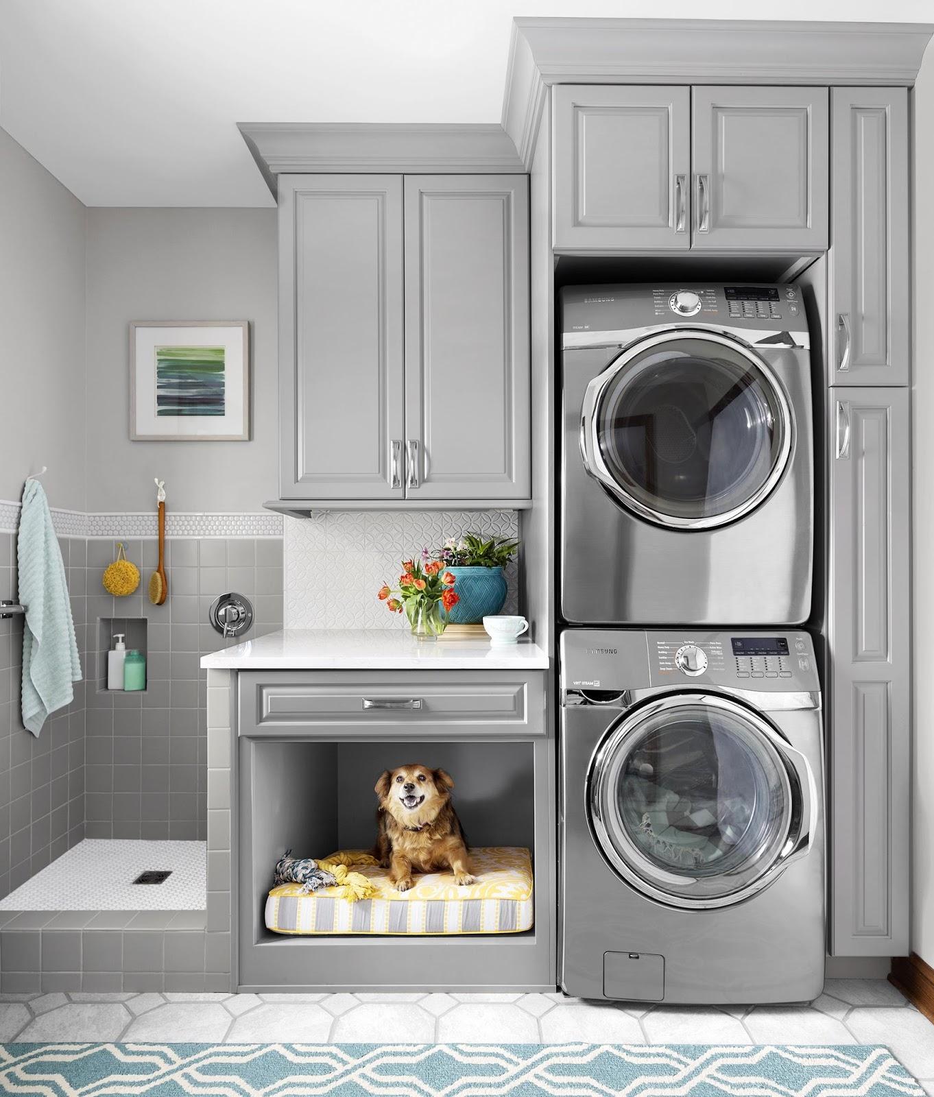 https://2.bp.blogspot.com/-KaxkCNBQqvE/WeUvvT8UrAI/AAAAAAAAkHg/kIgDZioq8Z8QECGbvYOeqj-k2qN1mPtKACLcBGAs/s1600/laundry%2Broom%2Bdog%2Bwash.jpg