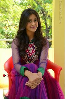 Actress Pooja Jhaveri Latest Stills in Purple Salwar Kameezt at Dwaraka Success Meet  0200.JPG