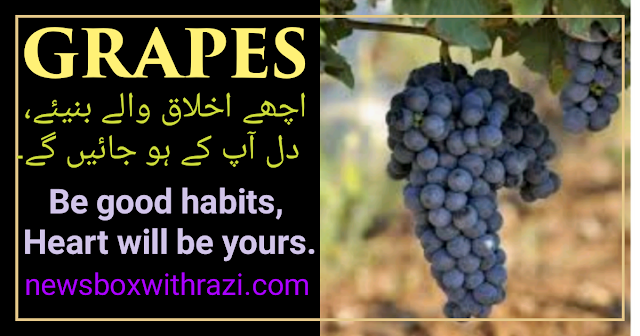 Good Habits- you need to develop