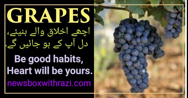Good Habits - you need to develop | newsboxwithazi