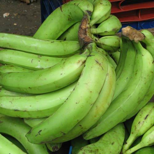 Health Benefits Of Unripe Plantain
