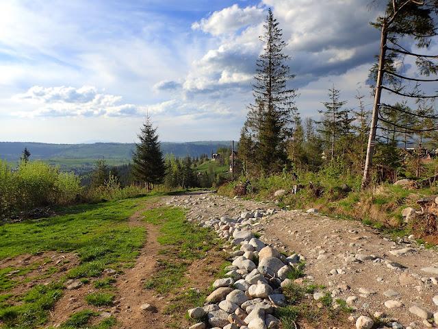 Początek szlaku na Toporowej Cyrhli