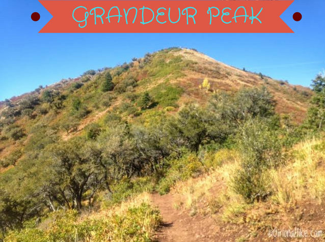 Hiking to Grandeur Peak, Millcreek Canyon, Utah, Hiking in Utah with Dogs