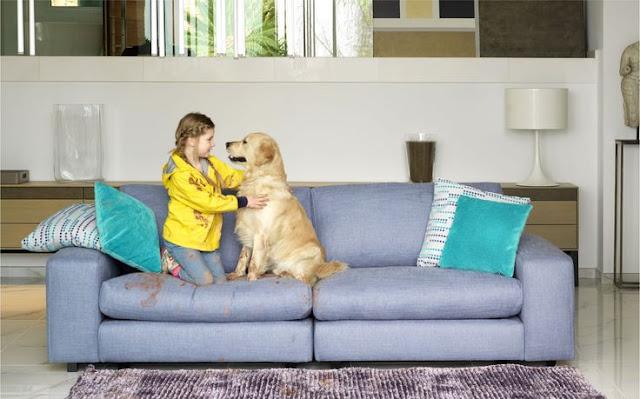Cómo limpiar la tela de los muebles