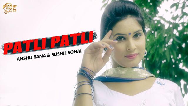 Patli Patli Lyrics Vinu Gaur Haryanvi Hits