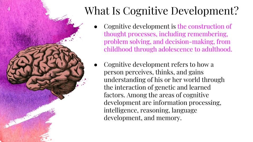 information processing and cognitive development Subject:home science paper: early childhood care, education and development.
