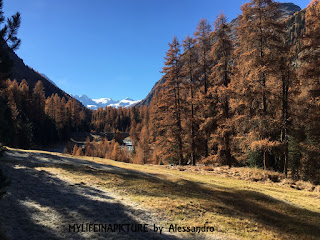 Mylifeinapicture, photo ,valle engadina