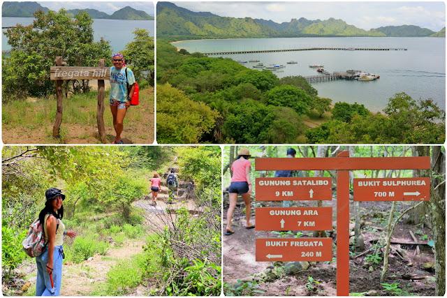 Fregata Hill Pulau Komodo