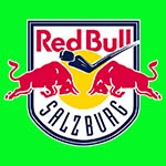 RB Leipzig www.nhandinhbongdaso.net