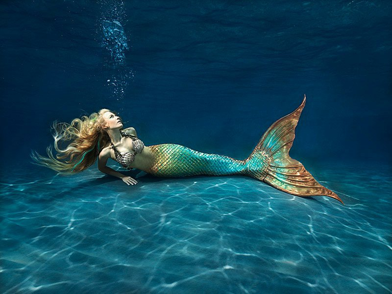 mermaid facts
