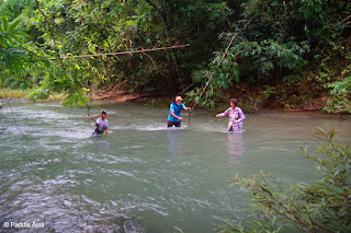 Southern Thailand jungle creek hike