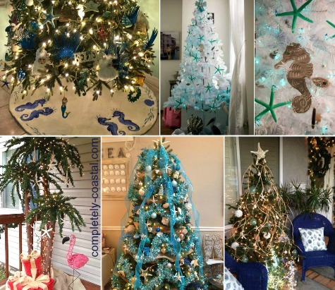 Coastal Christmas Trees Reader Submissions 2015