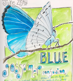 http://possumpatty.blogspot.com/2016/06/a-blue-gossamer-confusion.html