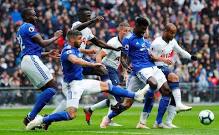 Tottenham Hotspur vs Cardiff City 1-0 Video Gol & Highlights