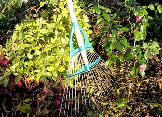 Spring-tine rake