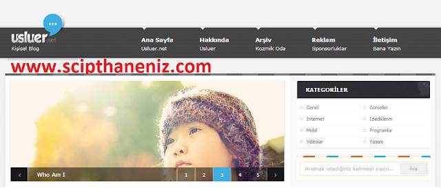 Wordpress Süper Kişisel Blog Teması İndir