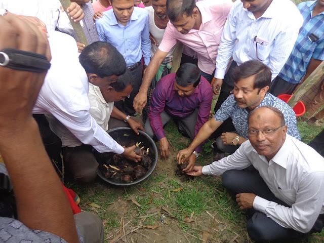 To-prevent-the-thunderstorm-planting-one-lakh-talgachha-in-Gaibandha