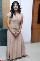 Hebah Patel in Brown Kurti and Plazzo Stuunning Pics at Santosham awards 2017 curtain raiser press meet 02.08.2017 021.JPG