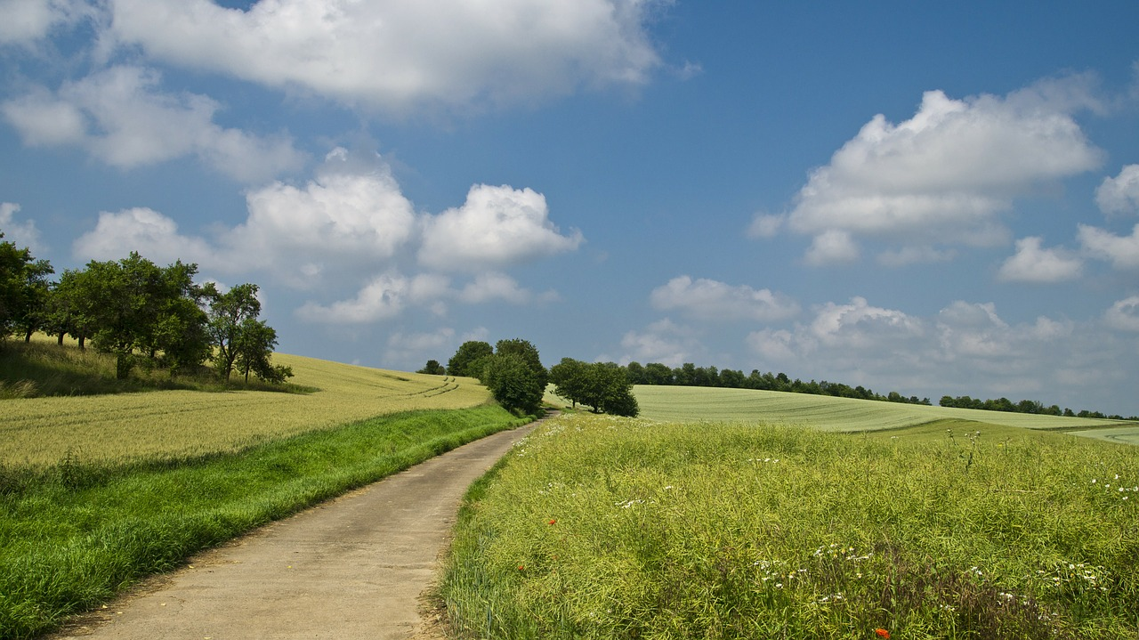 Tips-Tips Jual Beli Tanah Kavling Untuk Bisnis