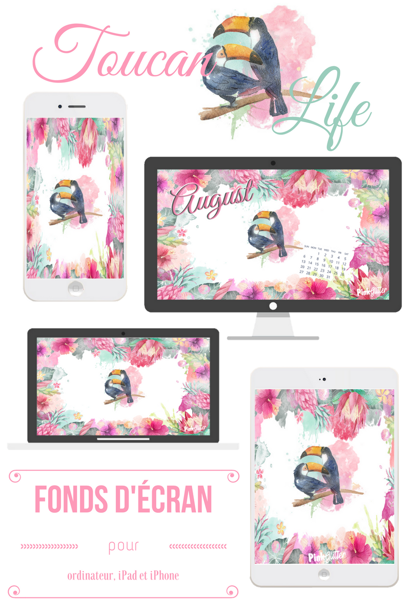 article fonds d'écran wallpaper ordinateur ipad iphone smartphone exotique tropical toucan
