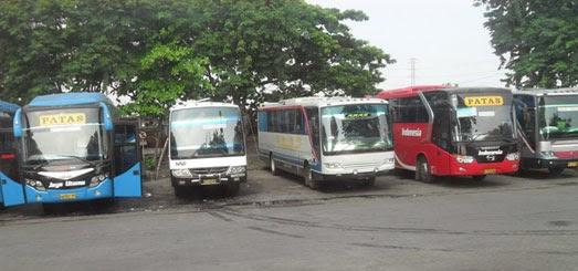 bus di terminal bungurasih surabaya
