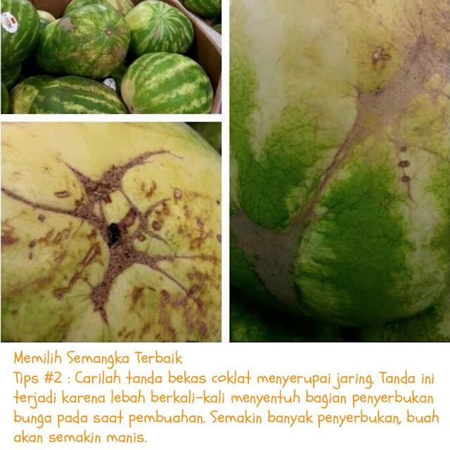 tips memilih semangka terbaik