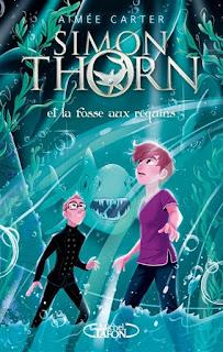 https://lacaverneauxlivresdelaety.blogspot.com/2018/12/simon-thorn-tome-3-simon-thorn-et-la.html