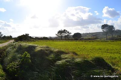 пешие туры в Португалии для любителей природы