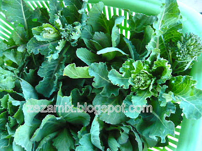 Young green vegetables for stew meat and chick peas