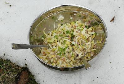 Chicoréesalat mit geräucherter Forelle und Avocado