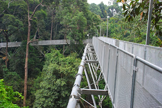 jarak tree top walk sungai sedim 950 meter