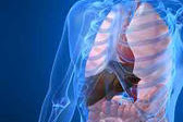 Hemochromatosis Diagnosis And Treatment