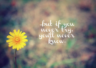 If you never try you will never know - life quotes