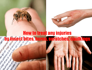 How long does it take for an insect bite to heal?
