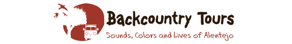 Backcountry Tours