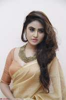 Sony Charistha in Lovely Brown Saree and Choli Spicy Pics ~  Exclusive 14.JPG