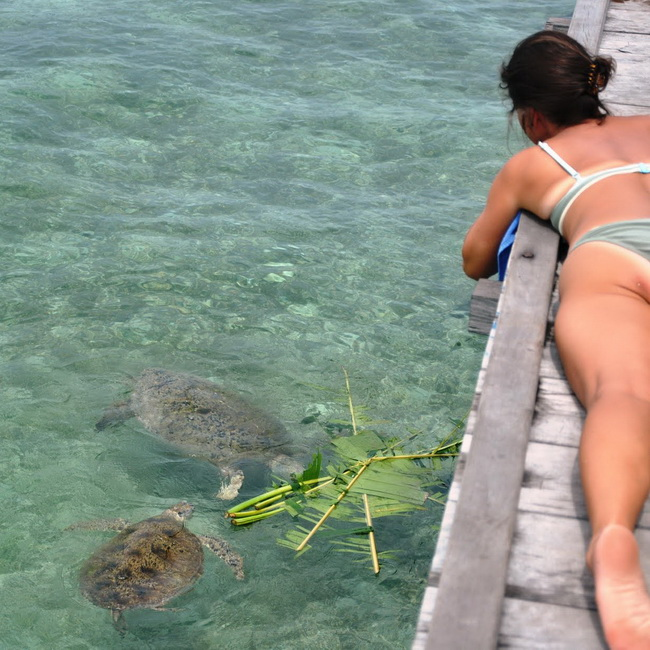 Xvlor Maratua is U-shaped island for perfect snorkeling and diving paradise