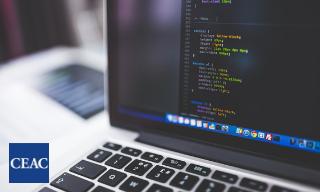 El auge del Desarrollo de Aplicaciones Web