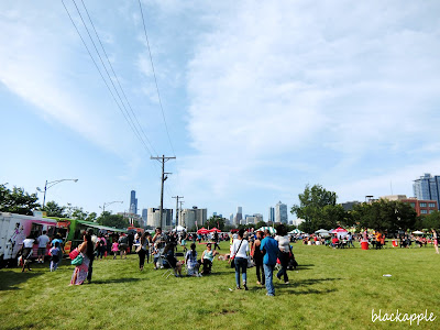 Chicago Food Truck Festival 2015_chitown