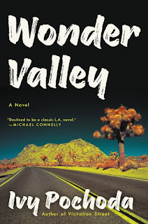 Review: Wonder Valley by Ivy Pochoda