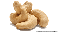 cashew nut illustrations pictures