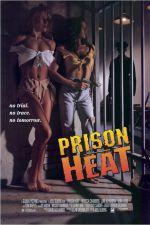 Prison Heat 1993 Watch Online
