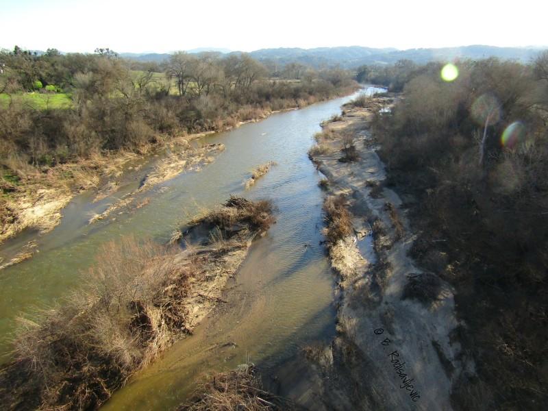 Salinas River Photos from Vineyard Bridge in Templeton