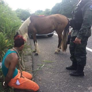 Homem assalta mulheres com chave de fenda e é preso fugindo em cavalo, na Paraíba