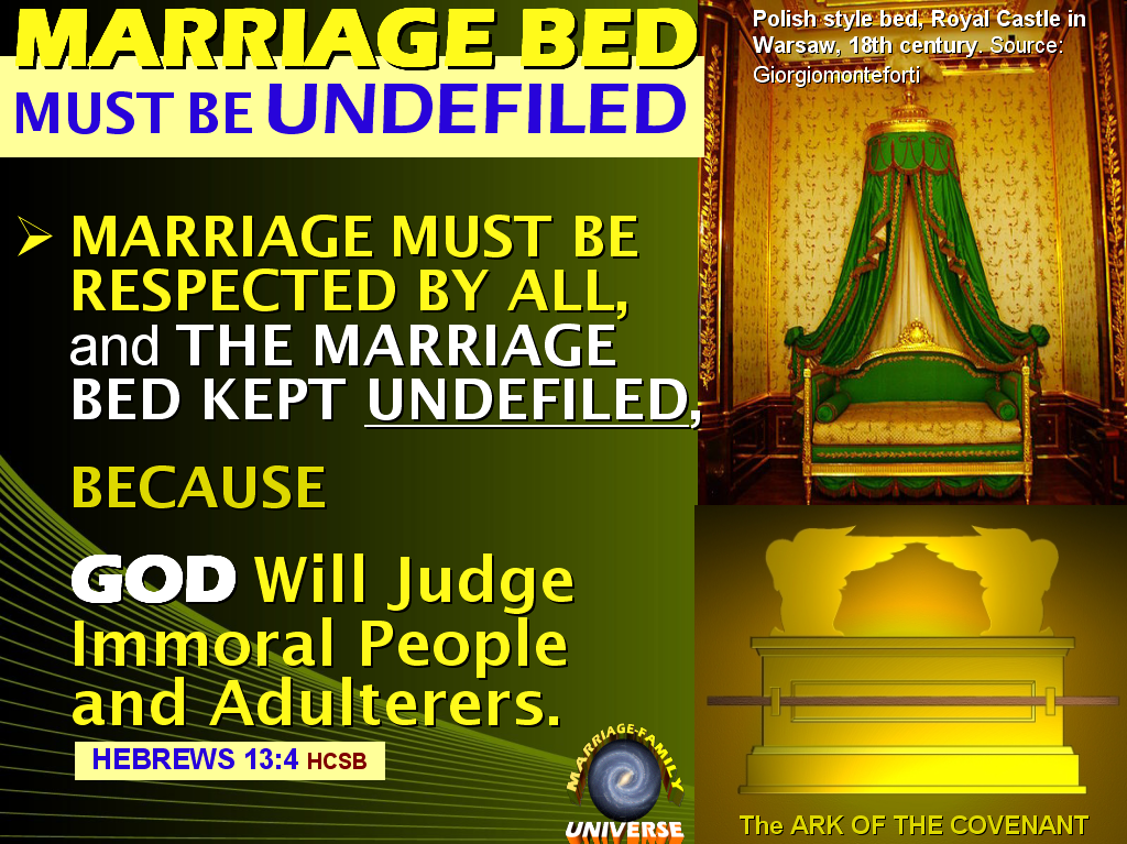 The Marriage And Family Universe The Immoral Intrusion To -7885