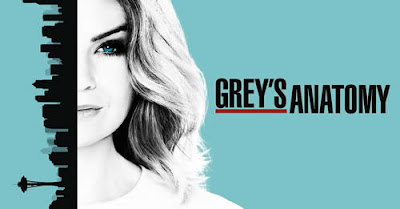 Grey's Anatomy (serie tv)