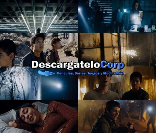 Maze Runner Prueba de Fuego DVDRip Latino