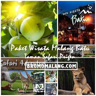 http://www.bromomalang.com/2016/04/paket-wisata-malang-batu-taman-safari-2.html
