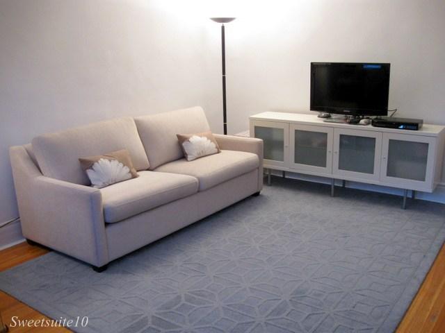 Homesense Rug in a livingroom